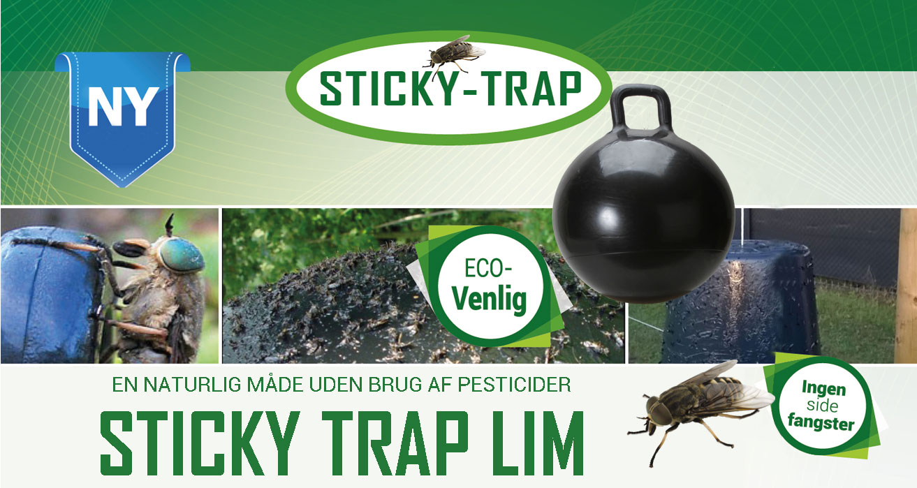 Sticky Trap article